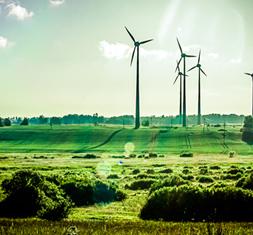 Renewable Database